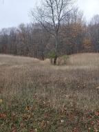 Forest View Trail, Mesick, MI 49668