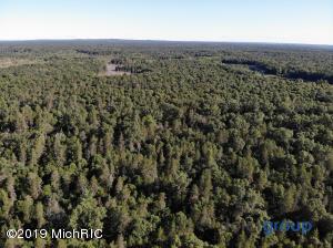 193 Acre Forest, Baldwin, MI 49304