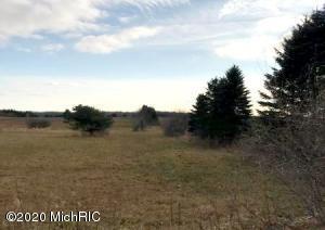 V/L E Freeman Road, Free Soil, MI 49411