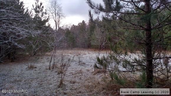 Manistee-County-Michigan-Hunting-Lease-3