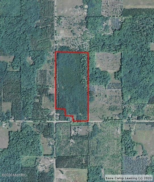 Manistee-County-Michigan-Hunting-Lease-1