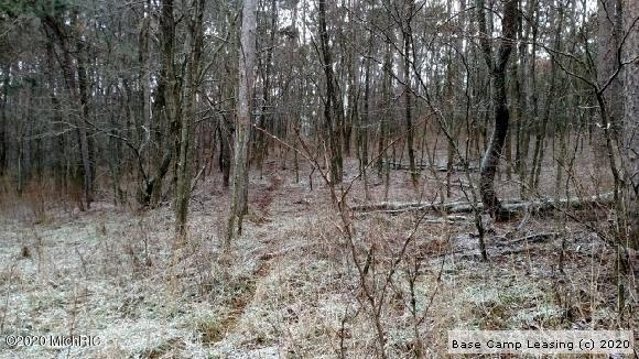 Manistee-County-Michigan-Hunting-Lease-6