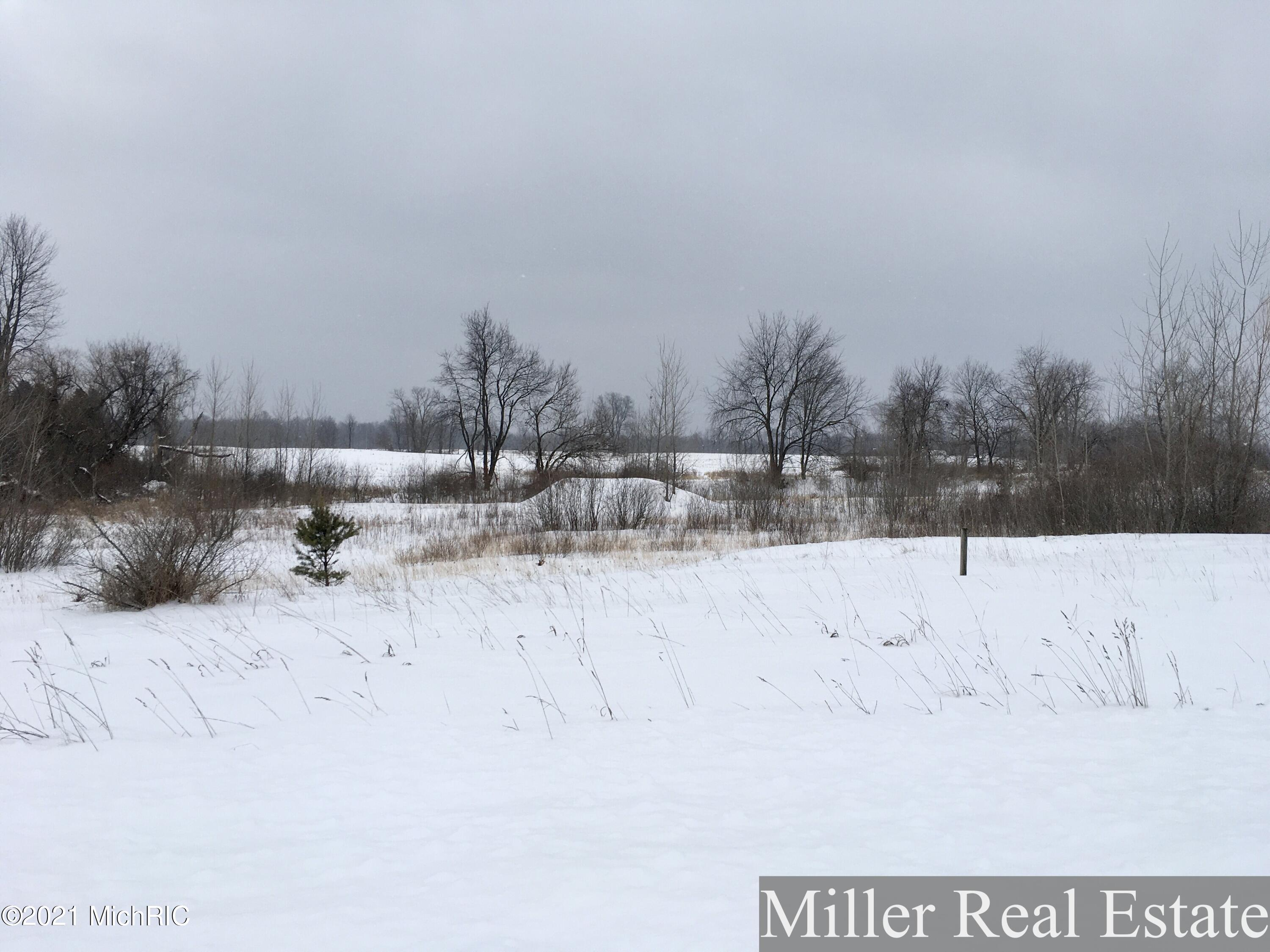 Property for sale at Lot 1 Jambrial Drive, Hastings,  Michigan 49058