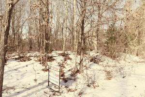 Lot 15 Pine Ridge Road, Battle Creek, MI 49017