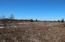 10200 S Forrest Side Road, Dafter, MI 49724