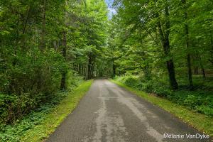 6969 Pines Lane SE, Caledonia, MI 49316