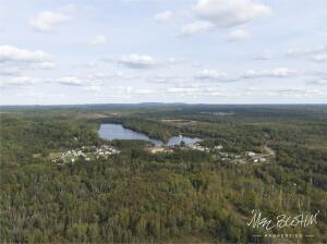 Aerial view of timber and Boston Lake looking East featured at County Road Ckk Champion, MI