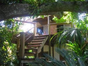 - Pumpkin Hill - North Shore, The Hideaway, Rustic Cabin, Utila,