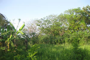 - Swanix Ridge - Inland, 0.23 Acre, Residential Lot, Utila,