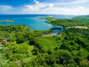 Waterfront property - 90 acres!