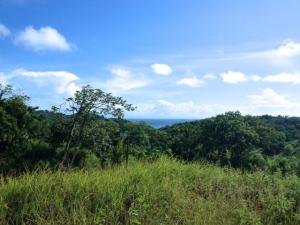 Seller Finance W-50%Down 6% In, Multipurpose-Lot, Roatan,