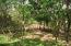 20160114161332140692000000-o First Bight, 3 Ridge Top Acres, Above, Roatan, (MLS# 16-22)