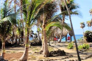 Trade Wind Road, Paradise Cove Bungalow, Utila,