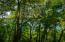 Parrot Tree Oceanview Lot 69, Roatan,