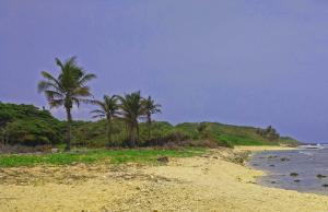 Pumpkin Hill Utila Lot A, 0.46 Acre Beachfront Home Site, Utila,