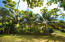 Tropical fruit trees surround the property.