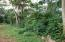 off Airport Rd. Lot 23, Arable Land, Great Value, Utila,