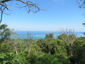 French Harbour Mall, .6 Acre Sea View Lot Above, Roatan,