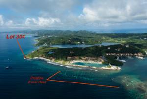 Home Site 304, Parrot Tree Oceanfront, Roatan,