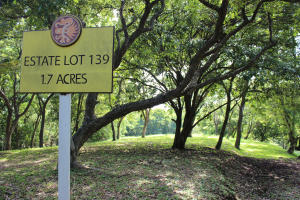 Parrot Tree Plantation, PTP Estate lot #139, Roatan,