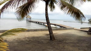 227 feet of Beach !!, Big Bight 2 Homes Beach Front, Roatan,
