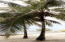 227 feet of Beach !!, Big Bight 2 Homes Beach Front, Roatan,