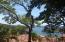 Parrot Tree, Hillside Lot # 133, Roatan,