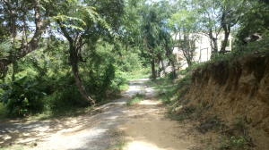 Main road, Sandy Bay, Whaletail Lot #5, 363 SM, Roatan,
