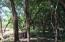 Parrot Tree Plantation #57, View Home Site, Roatan,