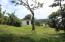 20170905155140301785000000-o B131+B132 Jonesville Point, Czech Village Business, Roatan, (MLS# 17-371)