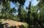 Brass Hill, 1.59 acres Hillside, Roatan,