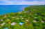 20171002180403528407000000-o Palmetto Bay B-18, Roatan, (MLS# 17-365)