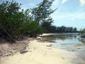 - Don Quickset - North Shore, 0.28 Acre Beachfront, Utila,