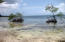 - Don Quickset - North Shore, 0.28 Acre Beachfront, Utila,