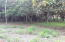 Lot # 9, West Bay 0.42 acre Latitude 16, Roatan,