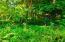 Crums Hill - by baseball field, Caribbean land, less than car!, Utila,