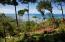 Great View, CLOSE TO THIS BEACH!, Roatan,
