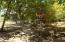 New Port Royal, Mango Creek Lodge, Roatan,