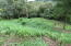 West End - West Bay, Rare Road Frontage 1.5 acres, Roatan,
