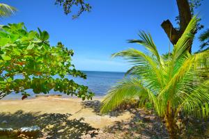 Blue Harbour, Beach Front Lot No.19, Roatan,