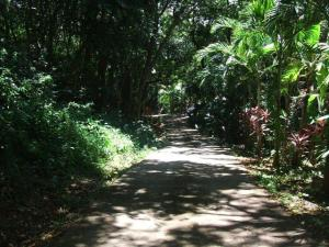 Brick Bay Road, Brick Bay Lot #3, 941 SM, Roatan,