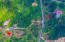 Aerial view Fantasy View Lot 12