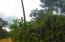 - quiet & outside of town, 1.69 acre Green forested oasis, Utila,