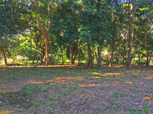 Near BICA, Hidden 0.14 acre Home site, Utila,