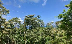 Havana Beach Road, Lot R-4, Roatan,