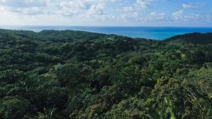 Turquoise views., Building site with beautiful, Roatan,
