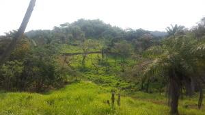 Sandy Bay, 12 acres Canyon View Property, Roatan,