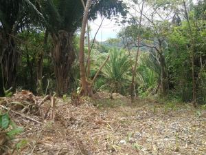 with Ocean Views, 0.55 Acre Hillside Lot, Roatan,