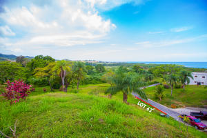 Lot 63 offers the owner multiple options as to where to situate a new home on this gently sloping plot.