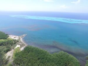 Big Bight, Big Bight near Blue Ocean Reef, Roatan,